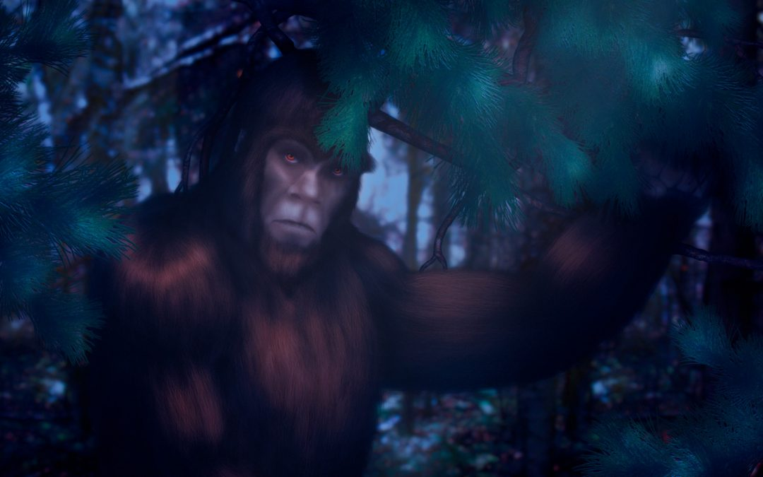 I was stalked by two bigfoot